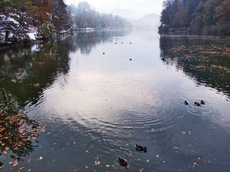 A sudden transition from autumn to winter in the area of the canyon of the Sitter river and reservoir Gubsensee or Guebsensee (Gübsensee) - Canton of St. Gallen, Switzerland Imagens