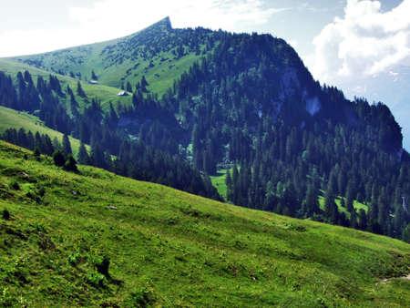 Tschugga peak or Tschugga Spitz in the Appenzell Alps mountain range - Canton of St. Gallen, Switzerland