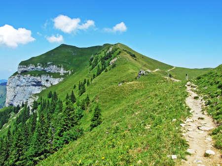 Alpine peak Kamor Trestenkopf in the Alpstein mountain range and in the Appenzellerland region - Canton of Appenzell Innerrhoden, Switzerland