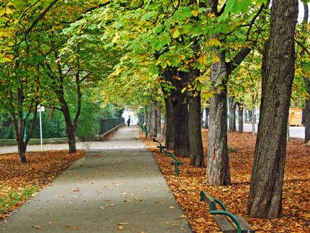 The Green Prater - A large public park in Vienna (Wien) - Vienna, Austria Stock Photo