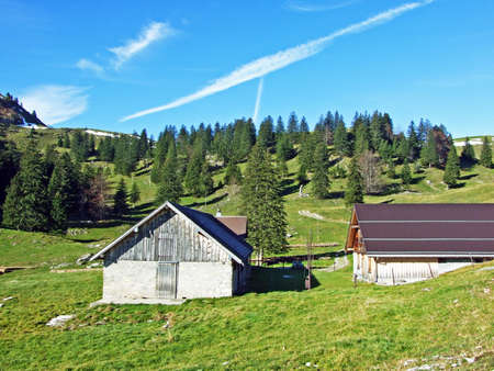 Rural traditional architecture and livestock farms on the slopes of Alpstein mountain range and in the Rhine valley (Rheintal) - Canton of St. Gallen, Switzerland