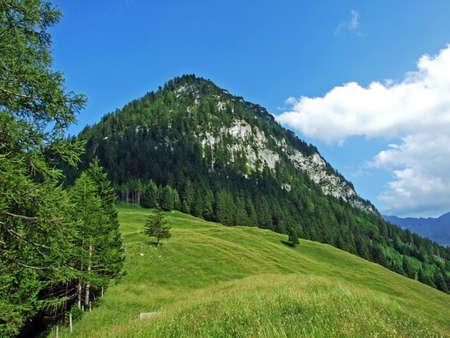 Alpine mountain peak Kirchlespitz over the Saminatal alpine valley and in the Liechtenstein Alps mountain massiv - Steg, Liechtenstein