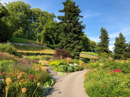 Landscape of The Flower Island Mainau on the Lake Constance or Landschaft der Blumeninsel im Bodensee - Constance, Germany / Konstanz, Deutschland