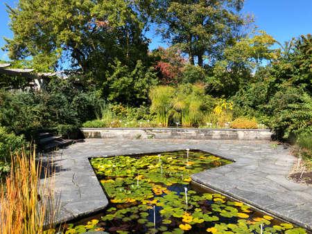 Botanical Garden St. Gallen or Der Botanische Garten St. Gallen (The Botanical Garden in Sankt Gallen), Switzerland / Schweiz Imagens