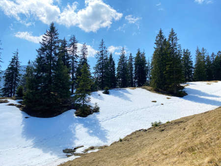 The early spring atmosphere with the last remnants of winter and snow in the Eigental alpine valley, Eigenthal - Canton of Lucerne, Switzerland (Kanton Luzern, Schweiz)