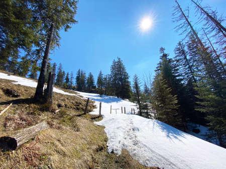 The early spring atmosphere and the last remnants of winter in the Alptal alpine valley, Einsiedeln - Canton of Schwyz, Switzerland (Kanton Schwyz, Schweiz)