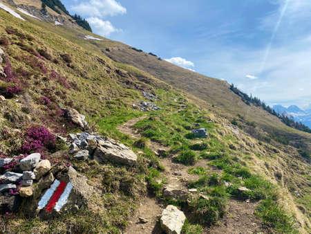 Mountaineering signposts and markings on the slopes of the Churfirsten mountain range and over lake Walensee, Walenstadtberg - Canton of St. Gallen, Switzerland (Kanton St. Gallen, Schweiz) Stock fotó