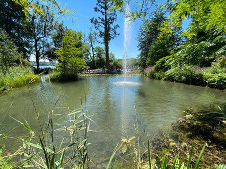 Landscape of the Pond and lawn for sunbathing or Teich mit Liegewiese (Flower Island Mainau on the Lake Constance or Die Blumeninsel im Bodensee) - Constance, Germany / Konstanz, Deutschland