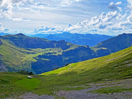 Alpine meadows and pastures on the slopes of the Uri Alps mountain massif, Melchtal - Canton of Obwalden, Switzerland (Kanton Obwald, Schweiz)