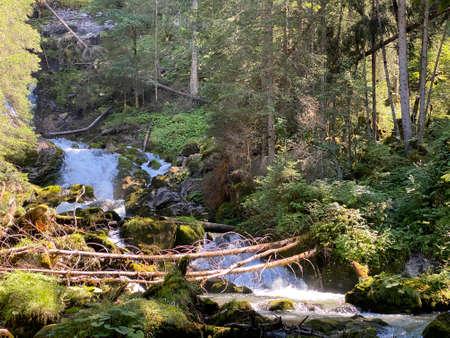 The Giessbach stream above Lake Brienz (Brienzersee) and in the eponymous nature park - Canton of Bern, Switzerland (Kanton Bern, Schweiz)
