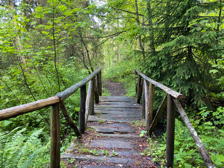 Small wooden bridges in the forest and over alpine streams in the Iberig region, Oberiberg - Canton of Schwyz, Switzerland (Kanton Schwyz, Schweiz)