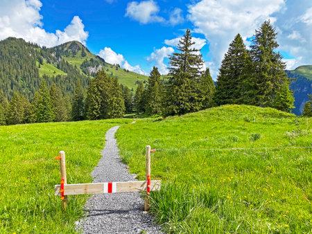 Mountaineering signposts and markings on the slopes of the mountain range First and in the Schwyz Alps mountain massif, Oberiberg - Canton of Schwyz, Switzerland (Kanton Schwyz, Schweiz) Stock fotó