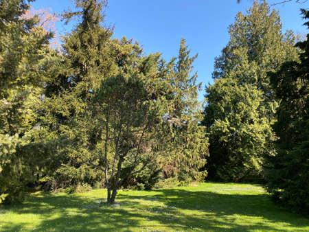 Arboretum, Conservatory and Botanical Garden of the City of Geneva (Conservatoire et Jardin botaniques de la Ville de Genève) - Switzerland (Suisse)