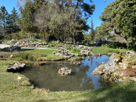 Rockery or Rocailles, Conservatory and Botanical Garden of the City of Geneva (Conservatoire et Jardin botaniques de la Ville de Genève) - Switzerland (Suisse)