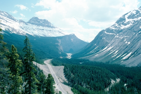 icefield: Canadian Rockies   Icefield Parkway