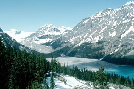 Canadian Rockie Peyto Lake Stock Photo