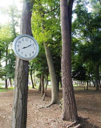 The wall clock in a wood