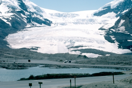 icefield: Columbia Icefield