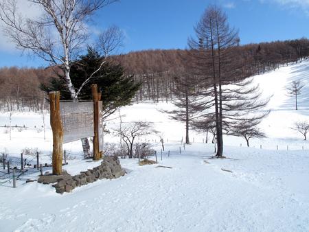 Winter nyugasa