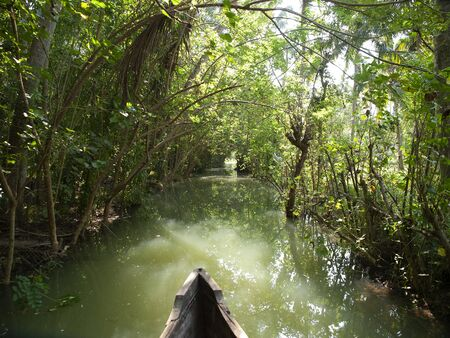 river cruise in the Kerala backwaters with traditional wooden fisherman boat