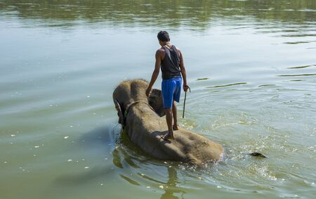 Chitwan, Nepal: November 06,2017: