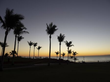 sihouette of palm trees at sunset in Broom, Western Australia