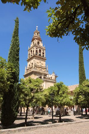 The interior garden with orange tree, in the Mezquita, Cordoba Stock Photo