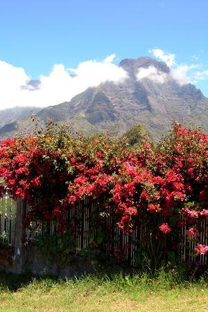 The Cilaos caldera, French Reunion island