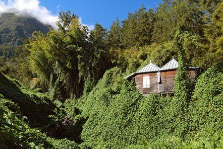 Abandoned wooden house, Salazie caldera, Hell-Bourg, Reunion island