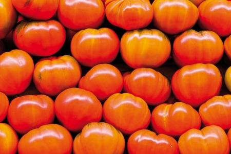 Tomaten Lizenzfreie Bilder
