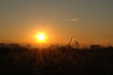 bellow: Grass abajo la puesta del sol