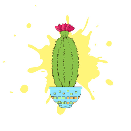 The beautiful blooming cactus on the white. Vector illustration