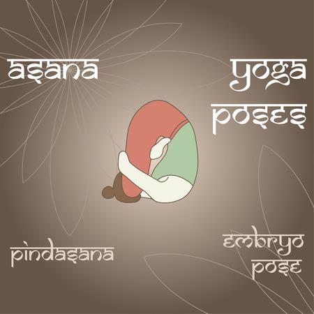 embrion: Pindasana. Pose de Embriones. Asana. Las posturas de yoga.
