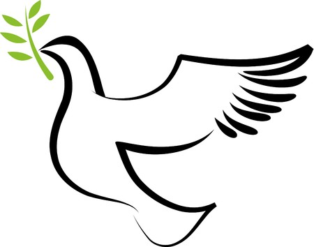 A free flying white dove with olive branch