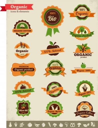 Organic food labels, tags and graphic elements Vector