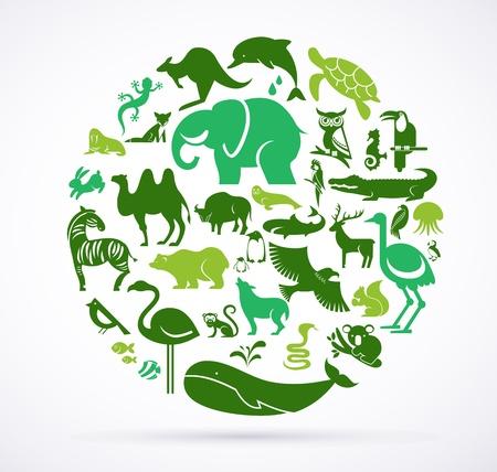 conservacion del agua: Animal mundo verde - gran colecci�n de iconos Vectores