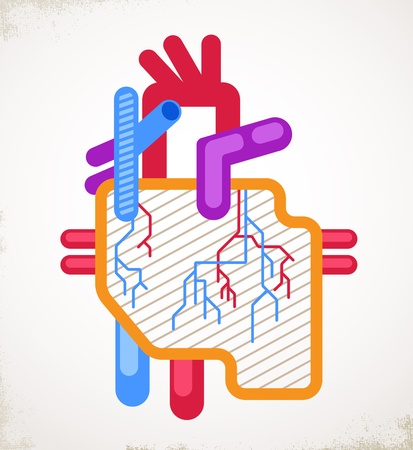 heart attack: Human Heart health, disease and heart attack illustration Illustration