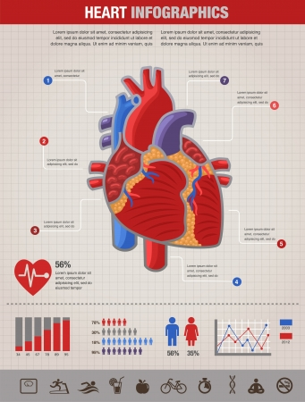 ventricle: Human Heart health, disease and heart attack infographic