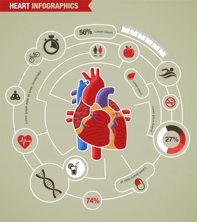 corazon: La salud del corazón humano, la enfermedad y la infografía ataque cardíaco Foto de archivo