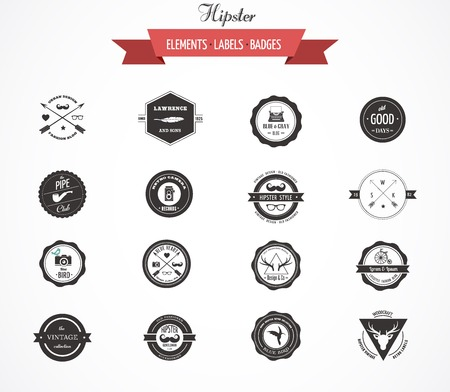 Hipster lables, badges and vector design elements
