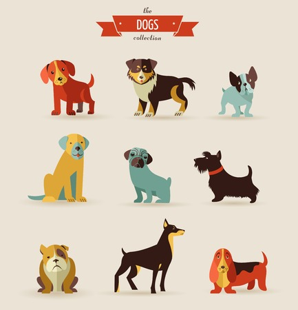 dog walking: Dogs vector set of icons and illustrations