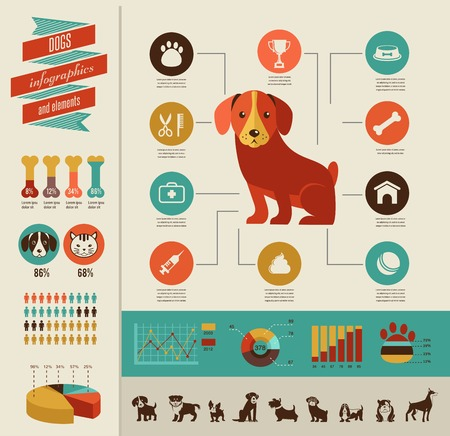 dog bone: Dogs infographics - vector illustration and icon set Illustration