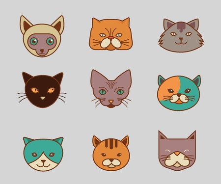 Collection of cat line and color vector icons, illustrations Vector