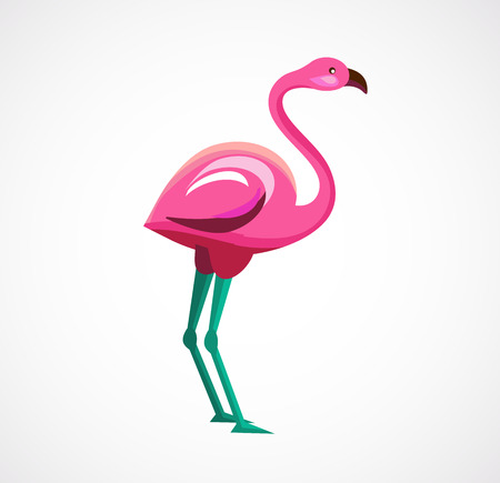 rosy: Pink Flamingo icon and illustration