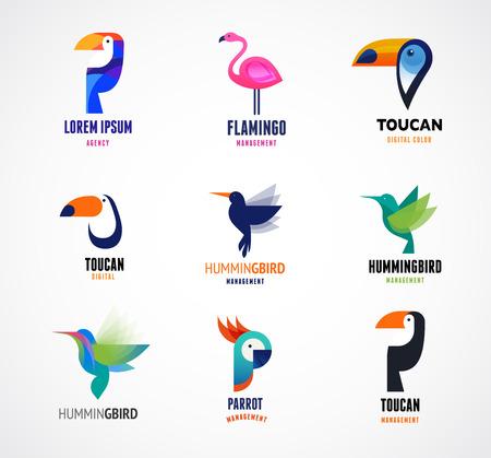papagayo: Las aves tropicales - conjunto de iconos vectoriales Vectores