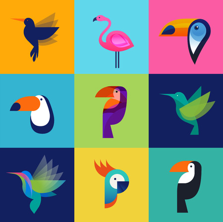 tucan: Tropical birds - set of vector icons