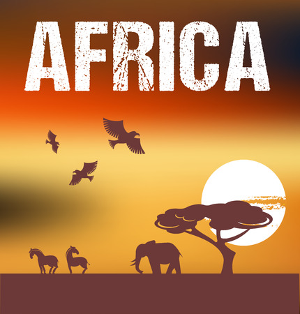 africa jungle: Africa - infographics and background