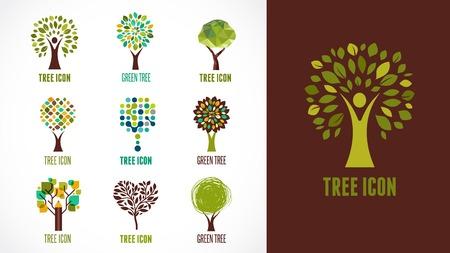 roble arbol: Colección de verdes árboles - logotipos e iconos Vectores