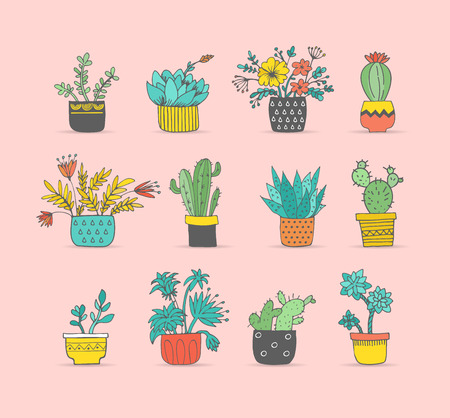 Cute hand drawn cactus and succulent set