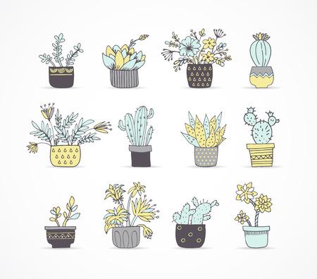 かわいい手描きのサボテンと多肉植物セット
